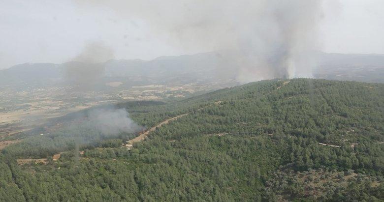 Son dakika: Muğla'da korkutan orman yangın