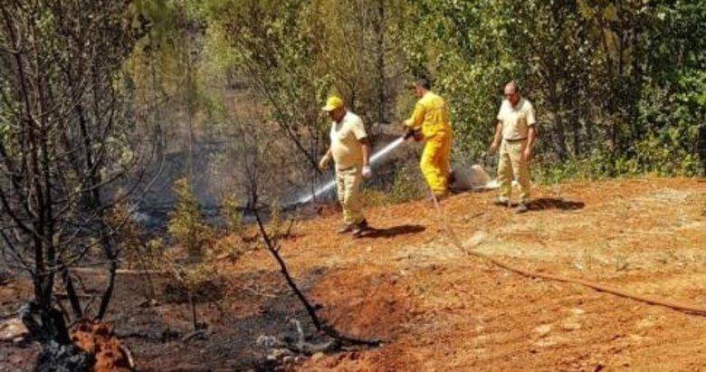Denizli'deki orman yangınında kundaklama iddiası