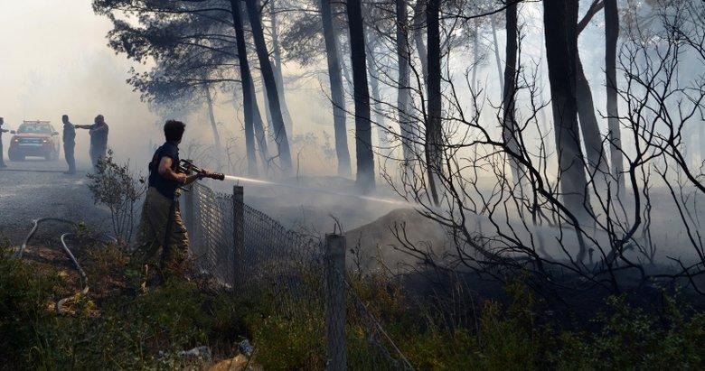 İzmirdeki orman yangınına ilişkin 1 kişi gözaltında