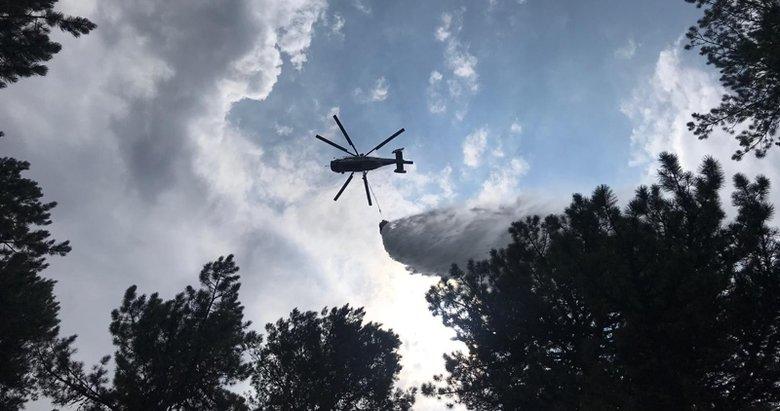 Kütahya Domaniç'te orman yangını büyümeden söndürüldü