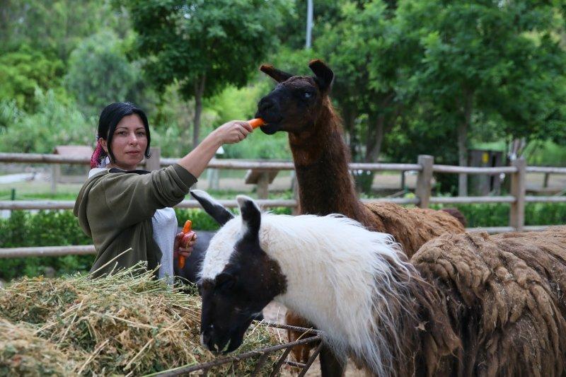 İzmir Doğal Yaşam Parkı sakinlerinin bakıcılarıyla gülümseten dostlukları