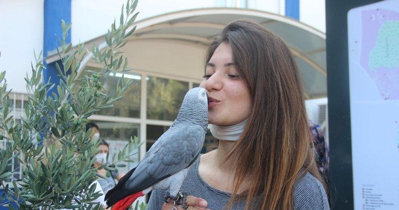 İzmir'de ilginç görüntüler! Sınava papağanı ile geldi