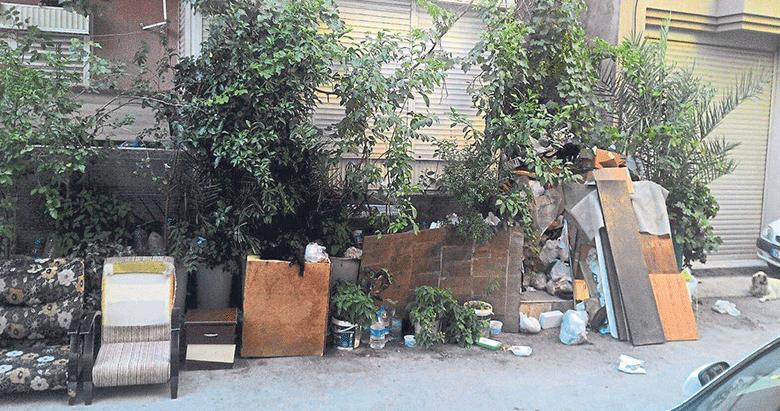 Çöp evle kimse ilgilenmiyor