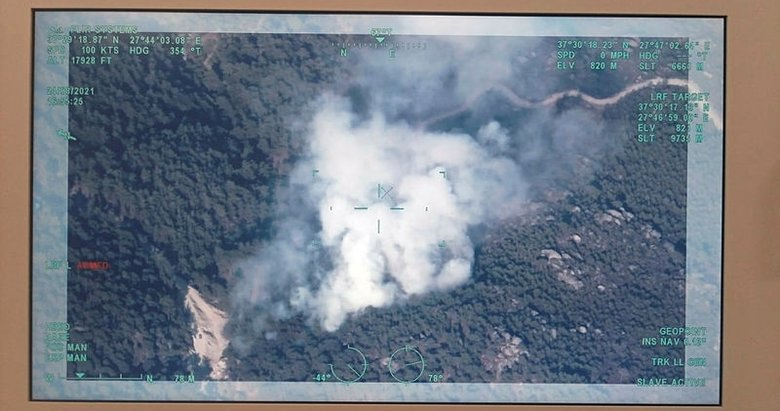 Aydın Karpuzlu'da orman yangını çıktı