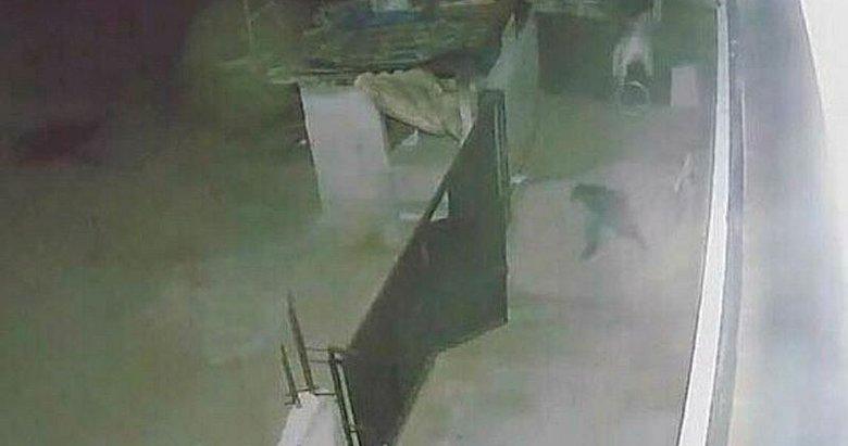 Tavuk hırsızı sandalye fırlatılınca kaçtı