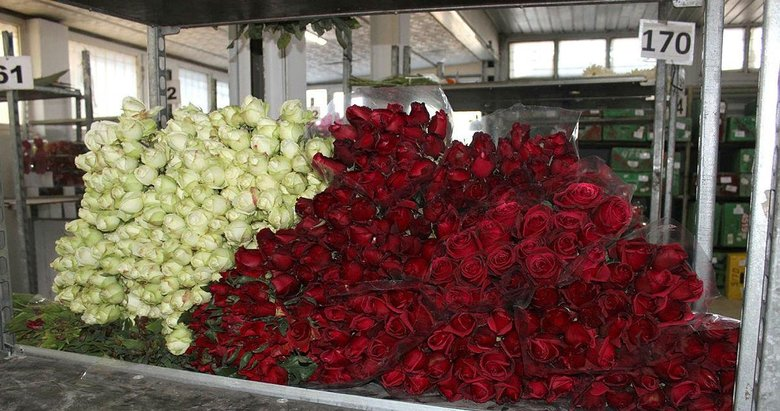 İzmir'de Sevgililer Günü nedeniyle gülün tanesi 20 liraya çıktı