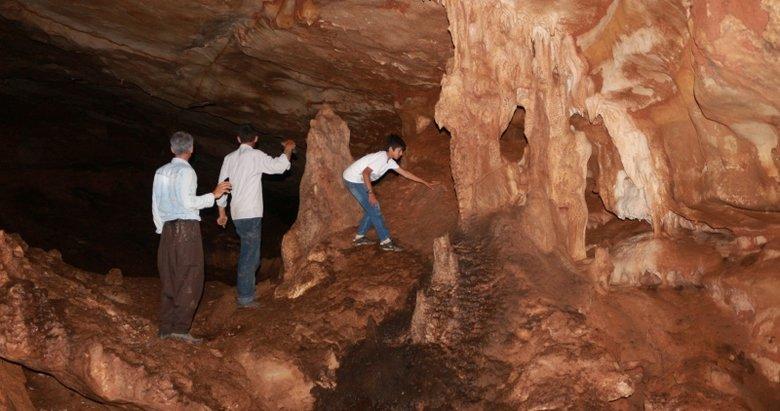 Mağaradakileri gördüklerinde şoke oldular!