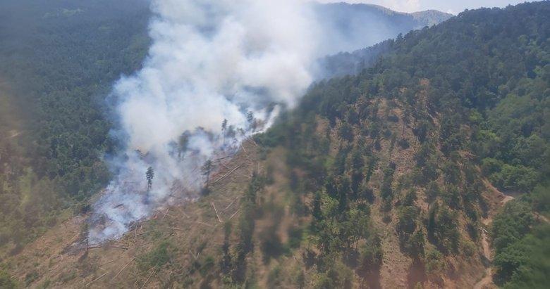 Sındırgı'daki yangında 1 hektar orman zarar gördü