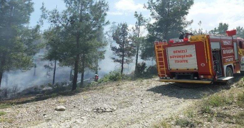 Acıpayam'da çıkan orman yangını 2 saatte söndürüldü