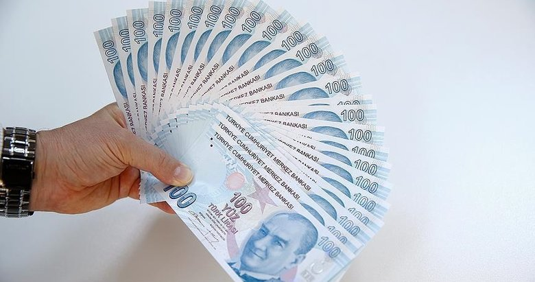 Ziraat, Halkbank, Vakıfbank destek kredi sonuç sorgulama!