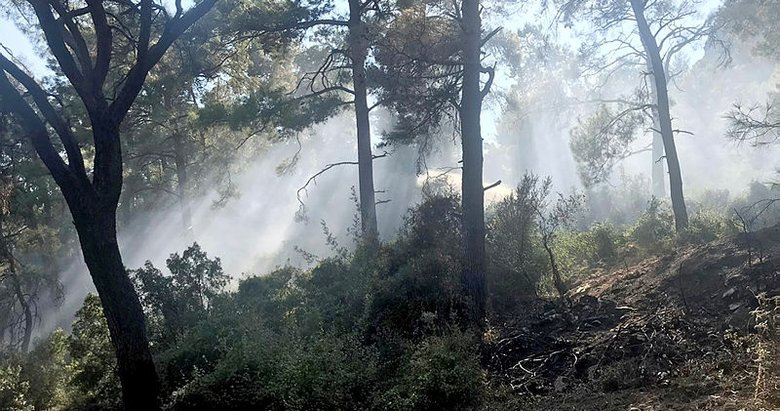 Marmaris'te aynı bölgede 3 günde 3 orman yangını