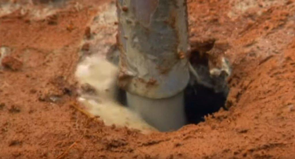 Karınca yuvasına 10 ton beton döktüler! Sonuç inanılmaz...