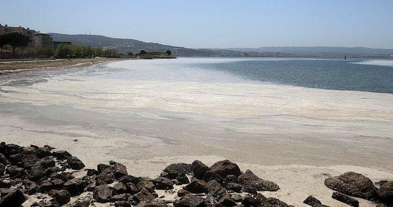 Deniz salyası neden oluşuyor? Uzmanı bu görüntünün sebebini açıkladı