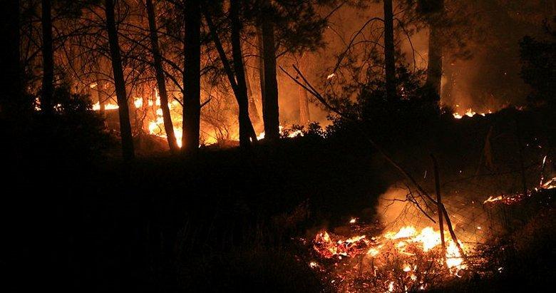 Muğla'daki orman yangınlarını terör örgütü PKK üstlendi