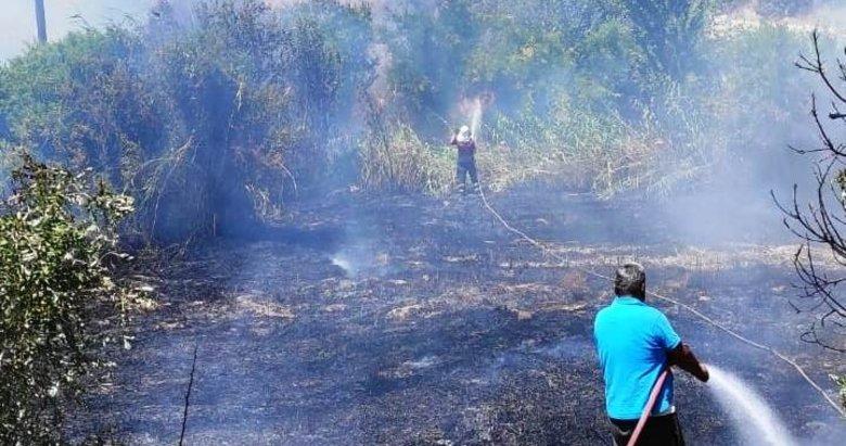 Aydın Karacasu'daki arazi yangını kontrol altına alındı