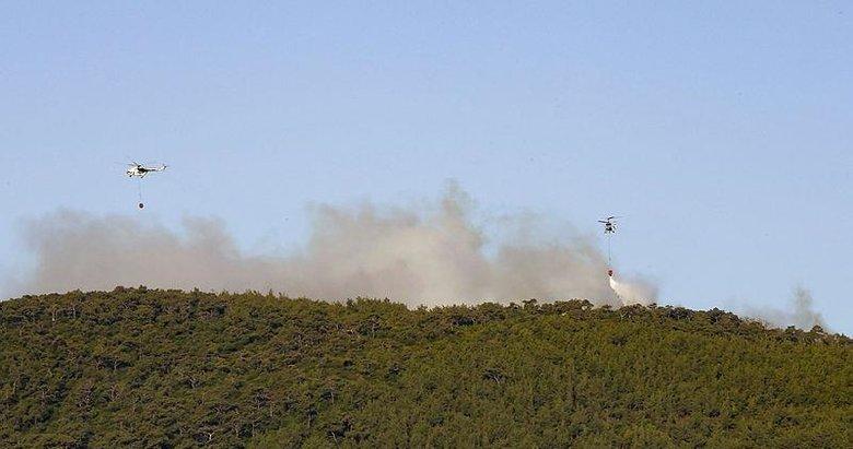 İzmir Foça'da makilik ve ormanlık alanda yangın! 1 uçak 5 helikopterle kontrol altına alındı