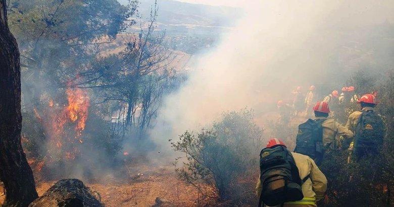 Nazilli'de ormanlık alana sıçrayan yangına müdahale sürüyor