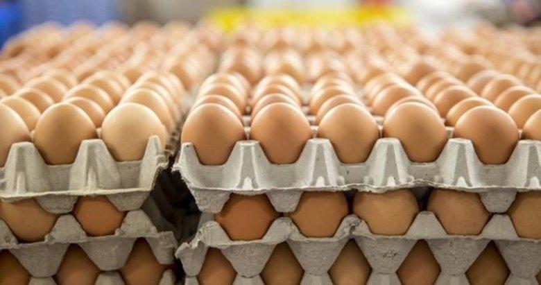 Yumurta üreticilerine destek! 90 gün vadeli satış yapılacak...