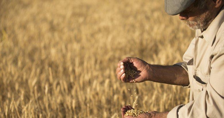 Çiftçiye 'kiralık arazi' müjdesi