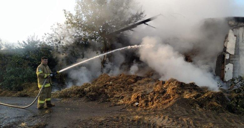 Balıkesir'de korkutan yangın! 4 bin balya saman kül oldu