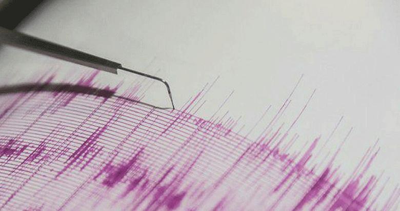 Ege Denizi'nde 4.6'lik deprem