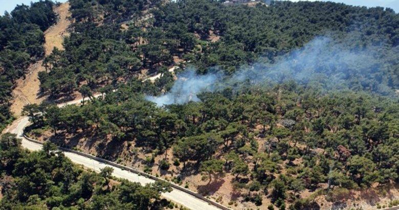 Son dakika: İzmir'de ormanlık alanda yangın