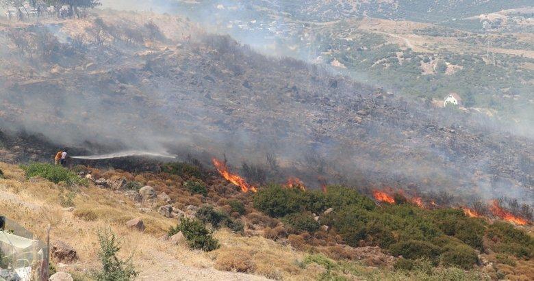Bornova'da otluk ve makilik alanda yangın