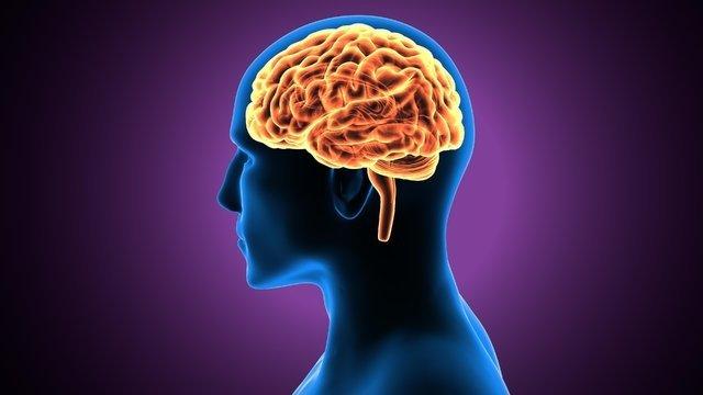 Bu soruları çözerek beyin yaşınızı hesaplayın!