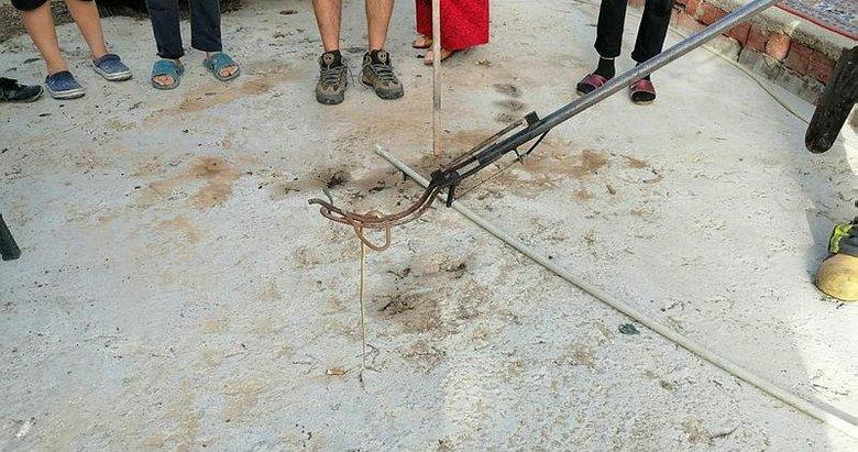 Fethiye'de eve giren yılan paniğe neden oldu