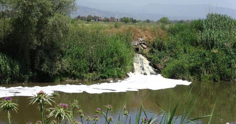 Büyük Menderes Nehri'nde kirlilik dördüncü aşamada