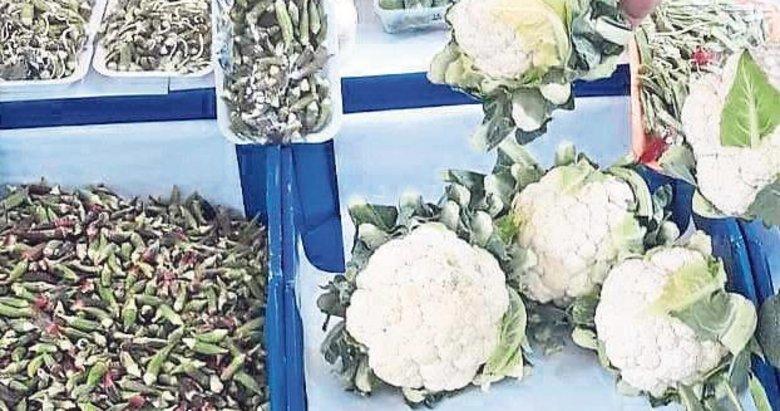 Karnabahar tarlada 4 tezgahta 15 lira