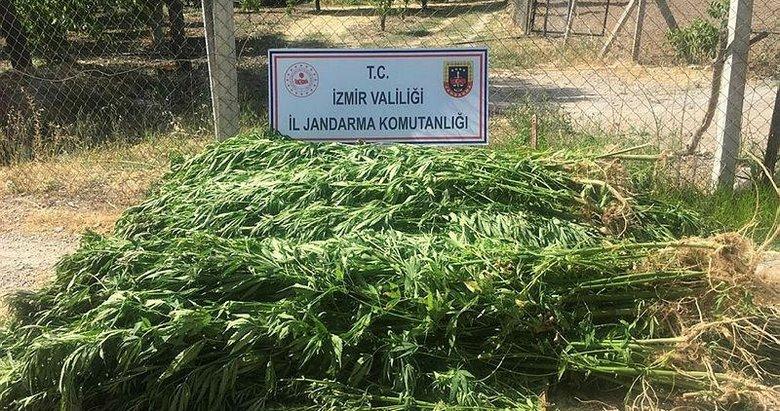 İzmir'de düzenlenen uyuşturucu operasyonlarında 7 şüpheli yakalandı