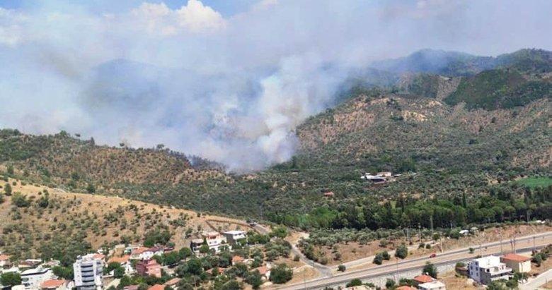 Son dakika: Muğla'da orman yangını