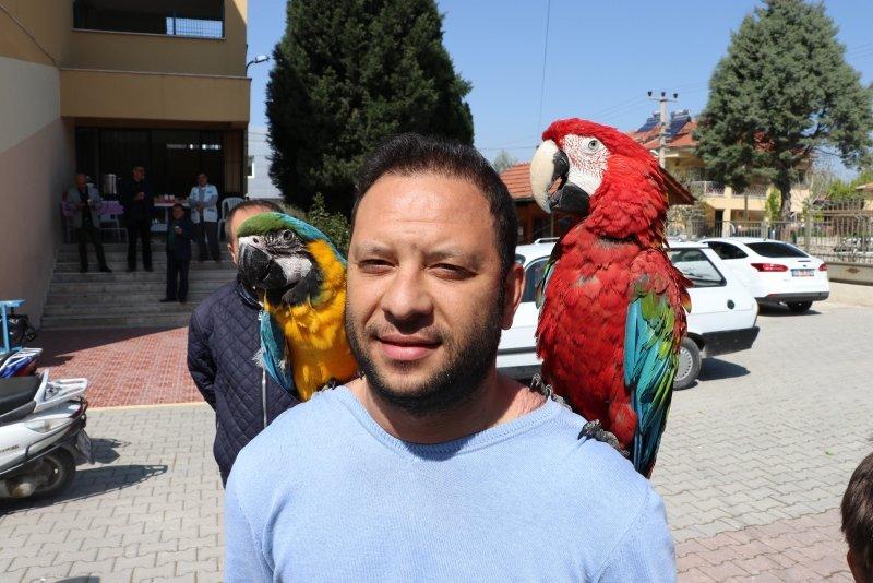 Denizli'de papağanlarıyla oyunu kullandı