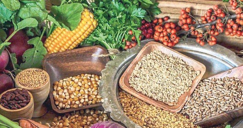 En kapsamlı yerli tohum seferberliği
