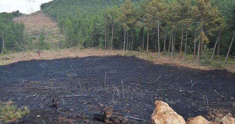 Kütahya'da ormanlık alandaki yangın korkuttu