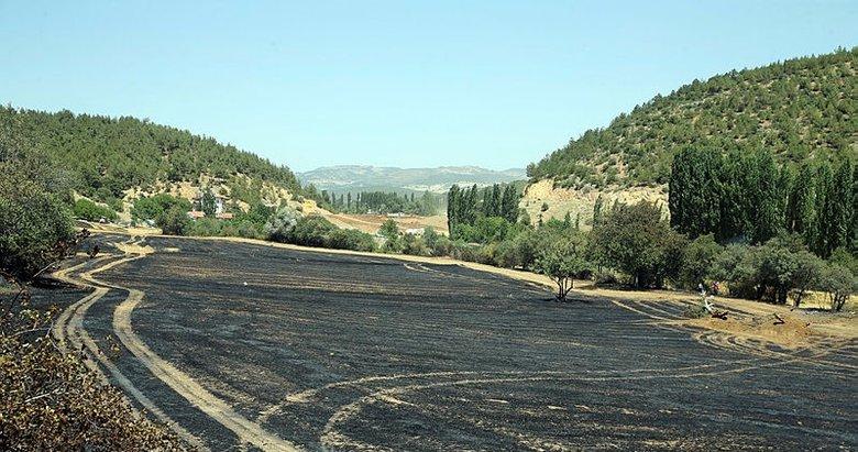 Uşak'ta çıkan 2 orman yangını kontrol altına alındı