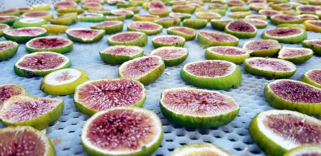 Faydaları saymakla bitmiyor! İşte incirin bilinmeyen faydaları..