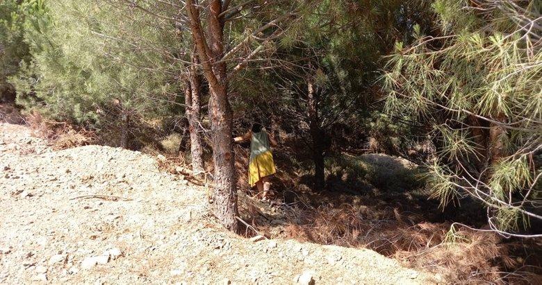 Bozcaada'da kaybolan Alzheimer hastası kadın 6 gündür aranıyor