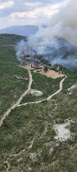 Denizli Acıpayam'da orman yangını çıktı