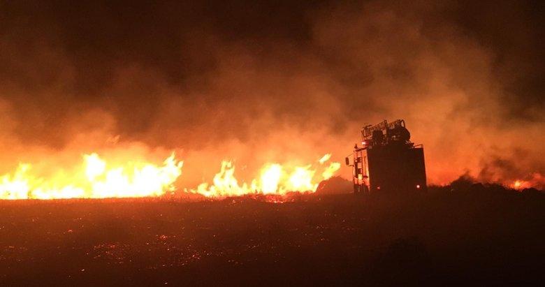 Avşa Adası'nda otluk alanda yangın