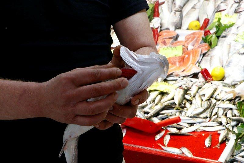 Çanakkale'de balık satışlarına müsilaj darbesi