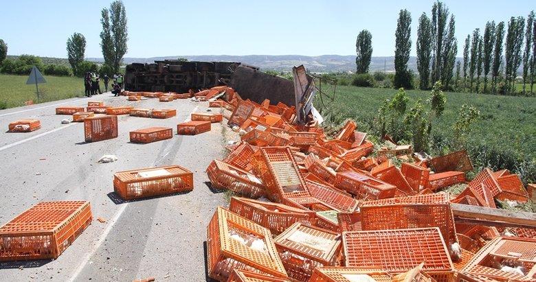 Manisa'da canlı tavuk yüklü TIR devrildi, yüzlerce tavuk telef oldu