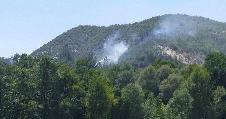 Denizli'de orman yangını! 15 dekar genç orman küle döndü