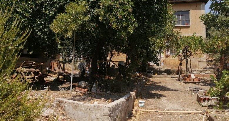 Muğla'da feci olay! Zeytin ağacında asılı bulundu