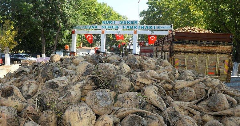 Uşak'taki 93 yıllık fabrikada şeker pancarı alımı başladı