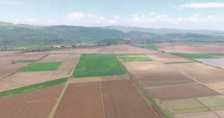 'Baklan tarım kenti olma yolunda'