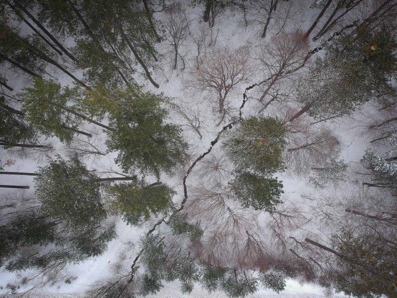 Enfes görüntüler ortaya çıktı! Kar yağışı Domaniç Dağları'nı beyaza bürüdü