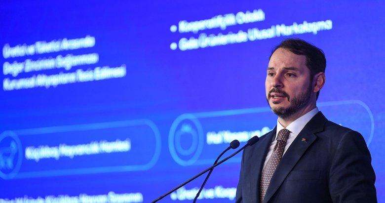 Hazine ve Maliye Bakanı Berat Albayrak'tan İVME Finansman Paketi açıklaması