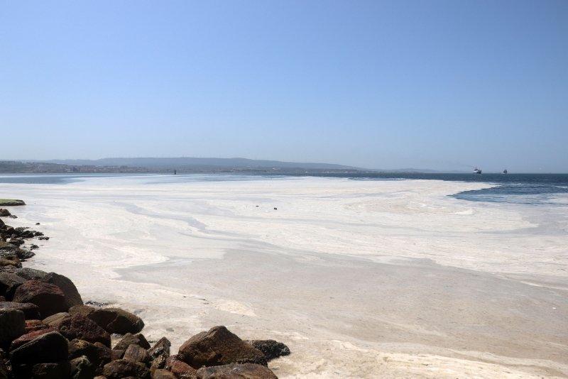 Çanakkale Boğazı deniz salyası ile kaplandı